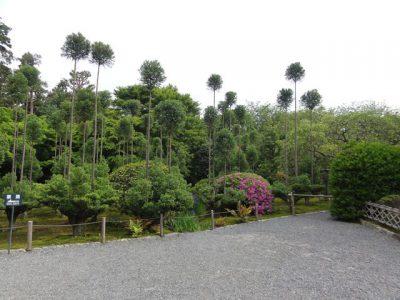 龍安寺の奥の庭