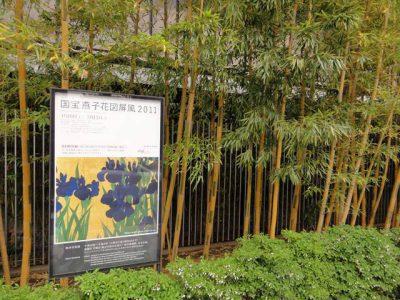 国宝燕子花図屏風 2011
