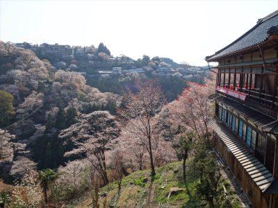 如意輪寺からの景色