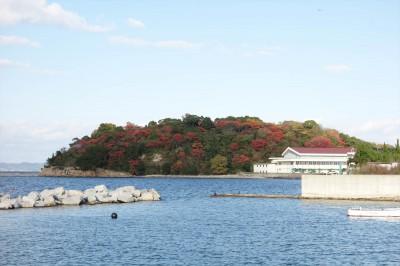 豊島の紅葉